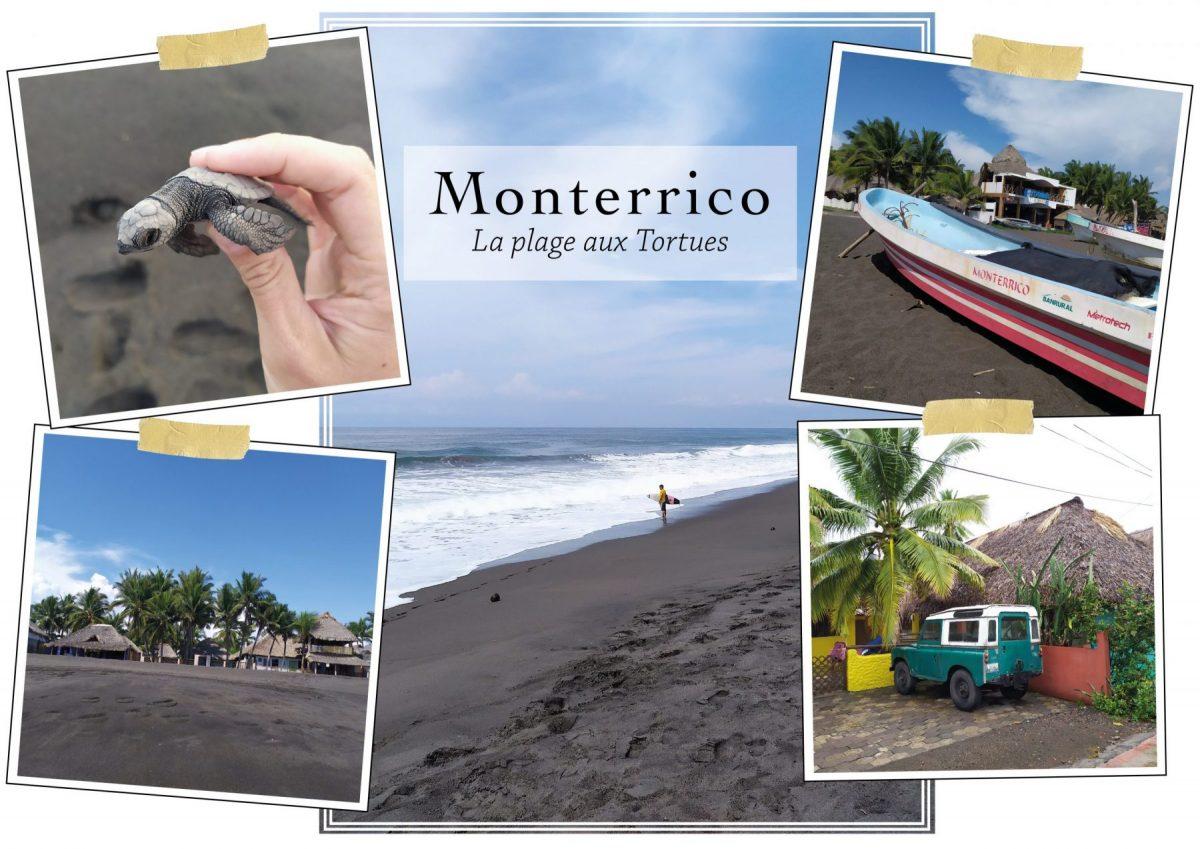 Guatemala Monterrico Pacific Ocean